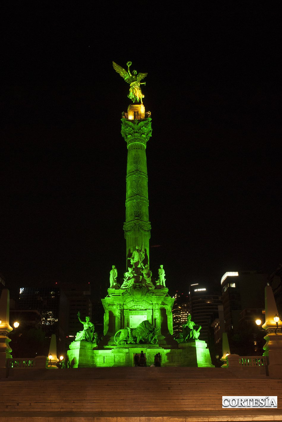 angel de la independencia san patricio 1